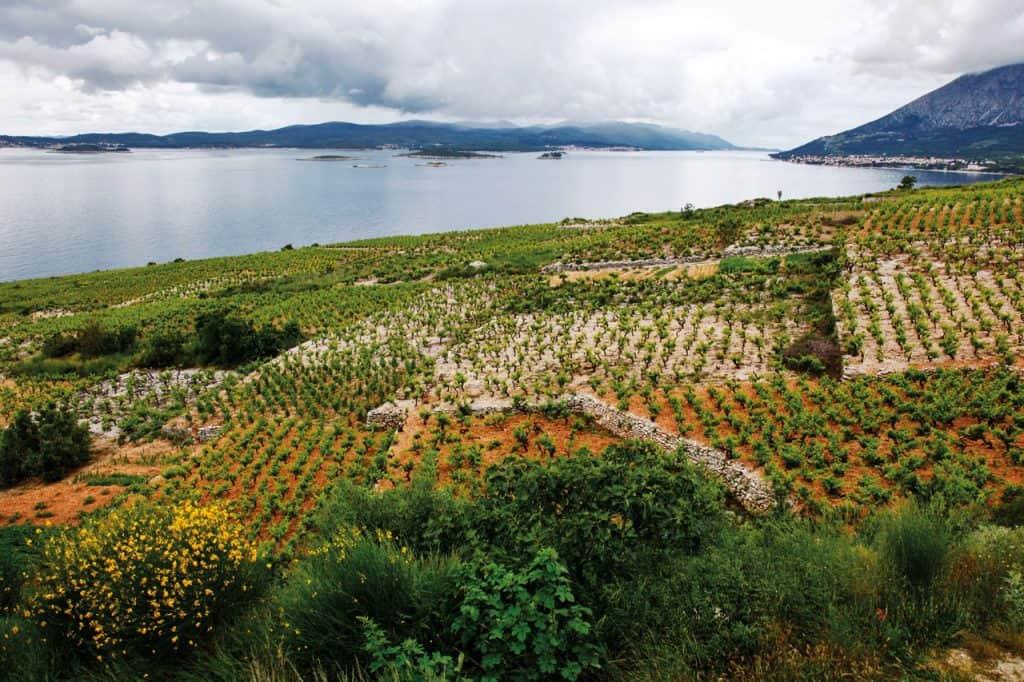 ovo je fotografija suhozida na jadranskoj obali
