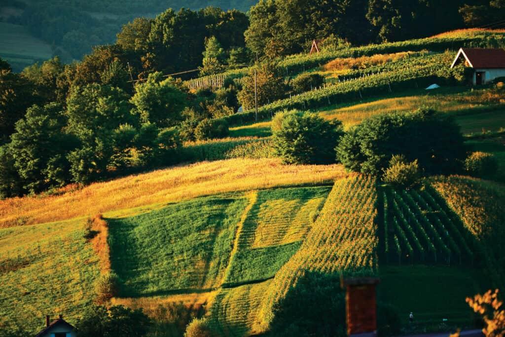 Ovo je fotografija Hrvatsko Zagorje Ravnice